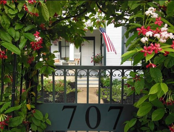 Timeless Serenity, bed and breakfast front gate with green vines and red flowers
